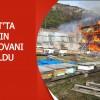 Şavşat'ta Yangın! 52 Arı Kovanı Kül Oldu