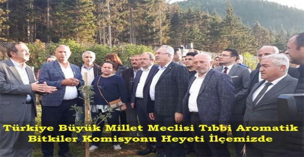 Türkiye Büyük Millet Meclisi Tıbbi Aromatik Bitkiler Komisyonu Heyeti İlçemizde